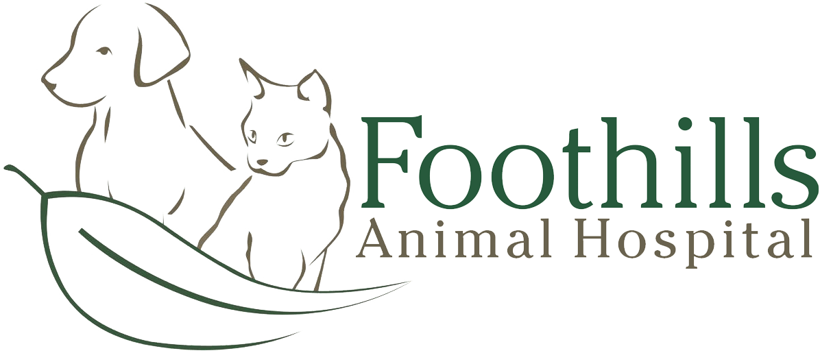 Foothills Animal Hospital | Vet Armadale | Vet Byford