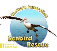 Western Australia Seabird Rescue Logo